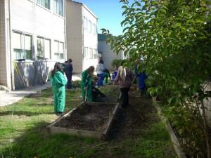jardinyvivero2